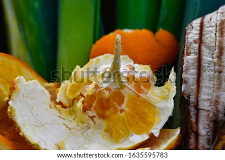 View into a container with organic waste for recycling, which consists of leeks, banana peels and orange peels. #1635595783