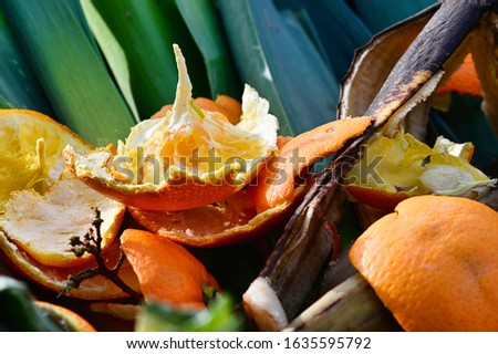View into a container with organic waste for recycling, which consists of leeks, banana peels and orange peels. #1635595792