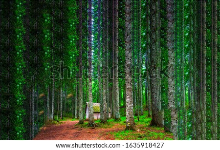 Deep forest hut in woods. Forest cabin in woods. Pine forest hut #1635918427