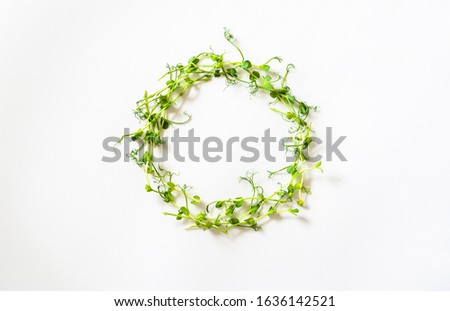 Wreath made of vernal green pea sprouts on a white backdrop. Spring composition with delicious and vitamin microgreens to illustrate healthy nutrition ingredients.