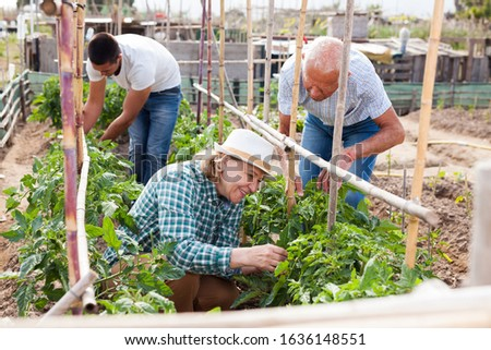 Grandmother and grandfather with grandson work in the garden #1636148551
