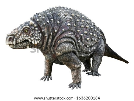 Scutosaurus (Shield lizard) is the herbivore genus of Parareptiles. It armor-covered Pareiasaur that lived during the Late Permian Period, Scutosaurus isolated on white background with clipping path Royalty-Free Stock Photo #1636200184