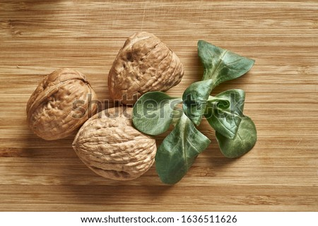 walnut and a cracked walnut closeup shot. Royalty-Free Stock Photo #1636511626
