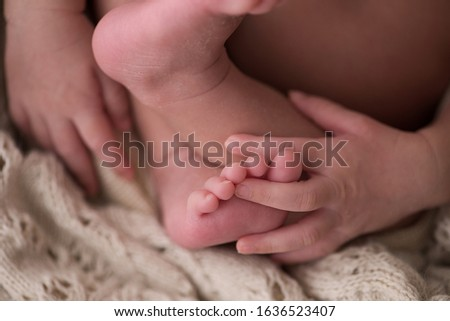 Newborn baby girl, closeup in her tiny hand and tiny feet.  #1636523407