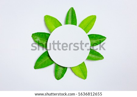 green leaf and paper circle on center #1636812655