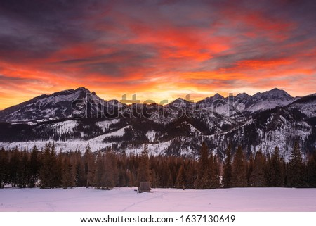 Winter in Tatra Moutains in Poland. High Tatras landscape photos. #1637130649