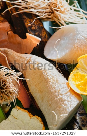 View into a container with organic waste for recycling, which consists of radish; leeks, banana peels and orange peels. #1637291029