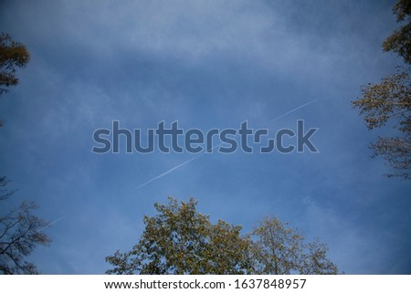 Treetops look from below in to the sky. Dark blue sky with little clouds. Tree canopy in the corners. A white line of airplanes in the sky #1637848957