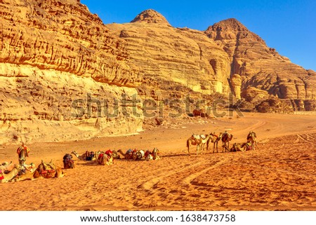 Group of dromedary camels waiting for tourists in the middle of the Valley of the Moon, Wadi Rum Desert, southern Jordan. Popular tourist destination for spectacular sandstone and granite rock. #1638473758