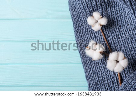 cotton flower on a knitted plaid, gray plaid with large knitting on a blue background #1638481933