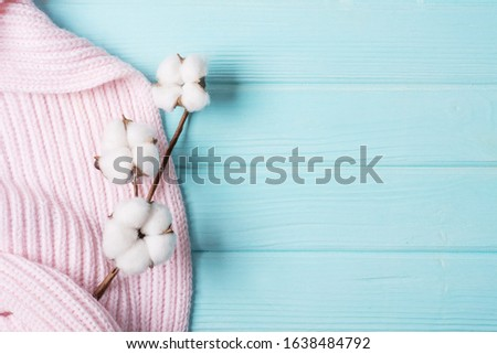 cotton flower on a knitted plaid, pink plaid with on a blue background #1638484792