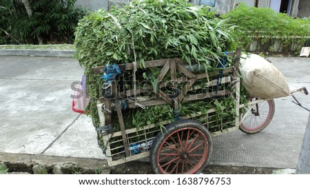 the wheelbarrow carries a stack of grass #1638796753