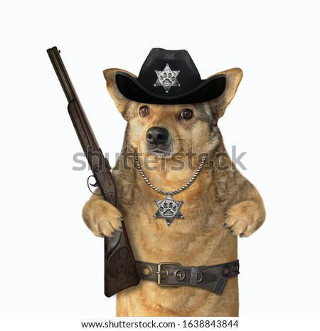 The beige dog policeman is wearing in a black cowboy hat, a police badge around his neck and a stainless steel belt. He holds a rifle. White background. Isolated.