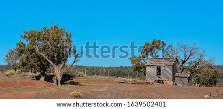 Rustic old cabin structure near Show Low, Navajo County, Arizona USA