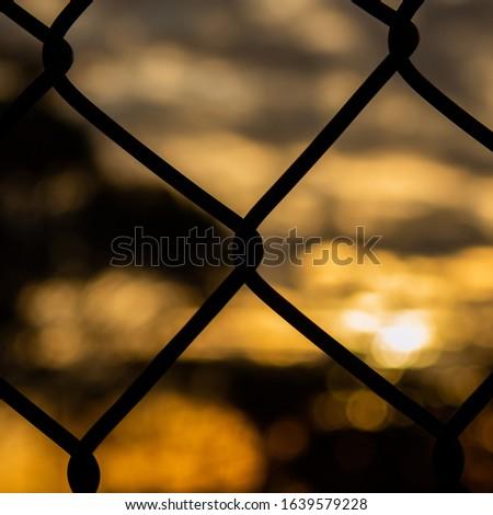 Summer glows through chainmesh fence #1639579228