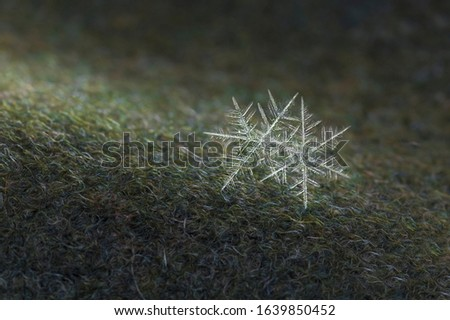 twin snowflakes on a woolen mitten macro Royalty-Free Stock Photo #1639850452