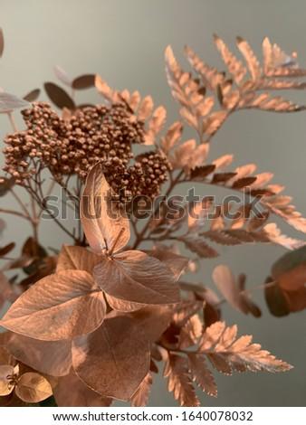 bronze decorative elements of plants  #1640078032