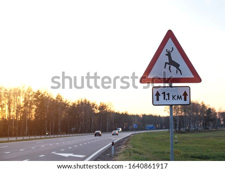 Road sign on the highway attention to wild animals on a background of sunny sunset. The concept of attention and safety on the road that goes through forests, copy space