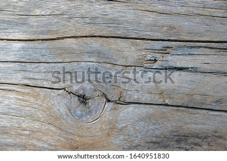 Natural wood blank Wooden floors with eyes. Surfaces or surfaces for placing objects. Wooden backgrounds for text on top and horizontal views #1640951830