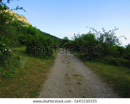 Pictures of mountains and valleys, mountain forests and valley roads #1641530335