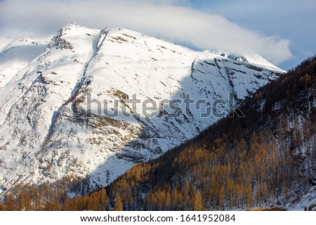 Two slopes in the Alpine mountains in winter: wooded and rocky. France, Savoy #1641952084