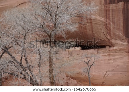 A distant landscape view of the scene surrounding the ancient Anasazi White House ruins atop a cliff in Canyon de Chelly. #1642670665