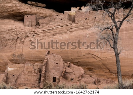 A landscape view of the ancient Anasazi White House ruins atop a cliff in Canyon de Chelly. Petroglyphs are visible on the canyon wall. #1642762174