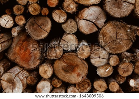 Background of stacked firewood. Stacked wooden logs wall. #1643009506