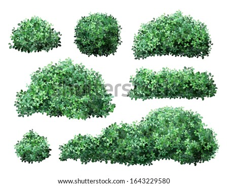 Realistic garden shrub. Nature green seasonal bush, boxwood, floral branches and leaves, tree crown bush foliage. Garden green fence vector illustration set. 3d public park and garden elements #1643229580