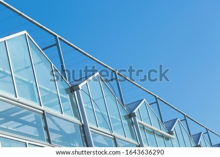 Close-up of steel structure greenhouse structure #1643636290
