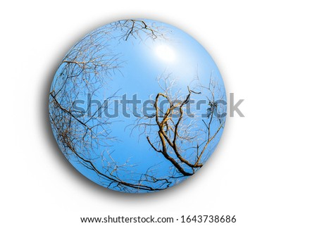 Ball with bare winter trees on a white background. Ecology concept. #1643738686