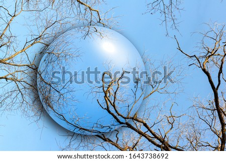 Ball with bare winter trees against the blue sky and tree branches. Ecology concept. #1643738692