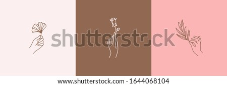 Logos of women's hands in a minimal linear style. Vector emblems with hand gestures holding a rose, Ginkgo leaf and olive branch. For packaging cosmetics, beauty Studio, tattoo, Spa, manicure, jewelry #1644068104