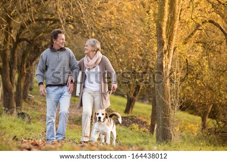 Senior couple walking their beagle dog in autumn countryside #164438012