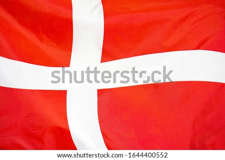 Fabric texture flag of Denmark. Flag of Denmark waving in the wind. Denmark flag is depicted on a sports cloth fabric with many folds. Sport team banner. #1644400552