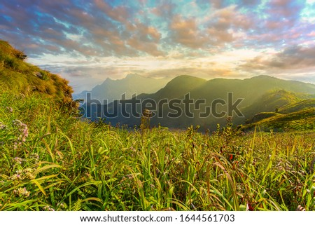 Mountain landscape in asia,Thailand, Asia, Landscape - Scenery, Sunrise - Dawn, Rainforest #1644561703