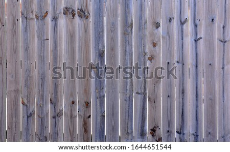 Weathered wood privacy fence with knots #1644651544