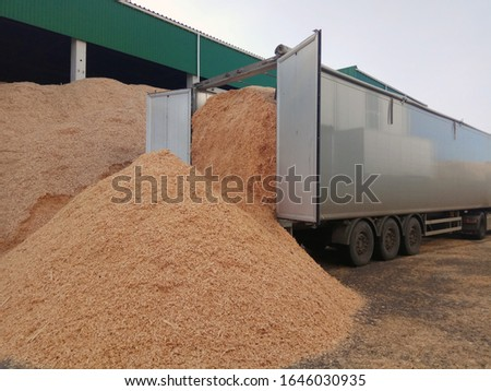 Unloading sawdust to the warehouse #1646030935