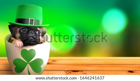 Cute pug puppy inside a mug wearing a leprechaun hat. Saint Patrick's Day theme concept.  Royalty-Free Stock Photo #1646241637