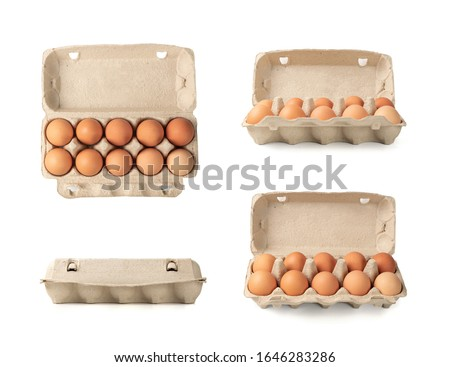 Open egg box with ten brown eggs isolated on white background with clipping path. Fresh organic chicken eggs in carton pack or egg container with copy space #1646283286