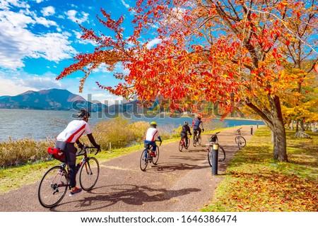Kawaguchiko. Japan. Bike riders ride along the promenade. Yagizaki Park. Men on the background of Lake Kawaguchiko. Japan tour. Group of Tourists in Fujikawaguchiko. Japan on an Autumn Day.