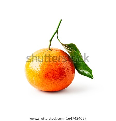 Fresh clementine citrus fruit with leaf. Single object isolated on white background clipping path included. Healthy eating and food concept. Design element