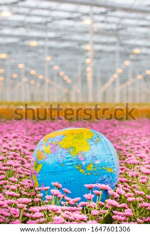 Dutch greenhouse with blooming flower plants and earth beach ball #1647601306