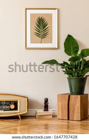 Retro interior design of living room with plants in green pot, vintage radio and gold mock up picture frame on the beige wall. Minimalistic concept of home decor. Minimalistic concept. Template.