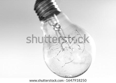 abstract photography, studio photography of a light bulb with a bullet impact. A shot that has made a hole and cracks at high definition