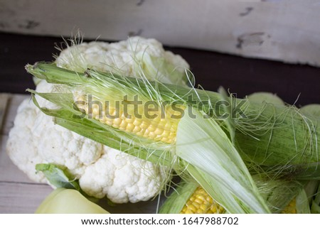 Homegrown vegetables. Fresh organic vegetables. Vegetables from the garden. Colorful vegetable. Healthy vegetable. Macro. Banner. Place for text #1647988702