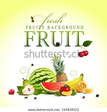 assorted fruit. vector #164828522