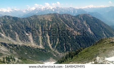 Meadows Pakistan.jpg picture Pakistani green #1648429495