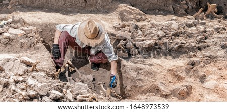 Archaeological excavations, human skeleton remains, found in an ancient tomb.  Royalty-Free Stock Photo #1648973539