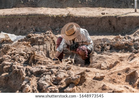 Archaeological excavations. Young archaeologist excavating part of human skeleton and skull from the ground.  Royalty-Free Stock Photo #1648973545